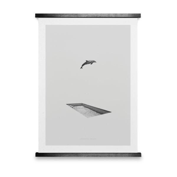 Dolphin & Pool Art Print