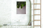 Green Leaves Photo Art Print