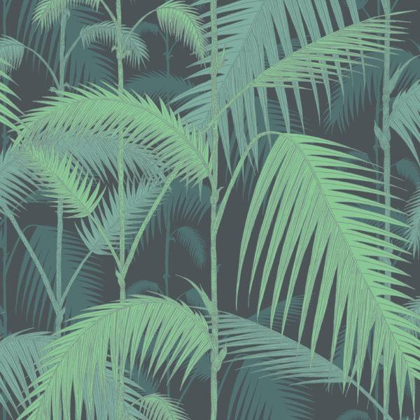 Palm Jungle