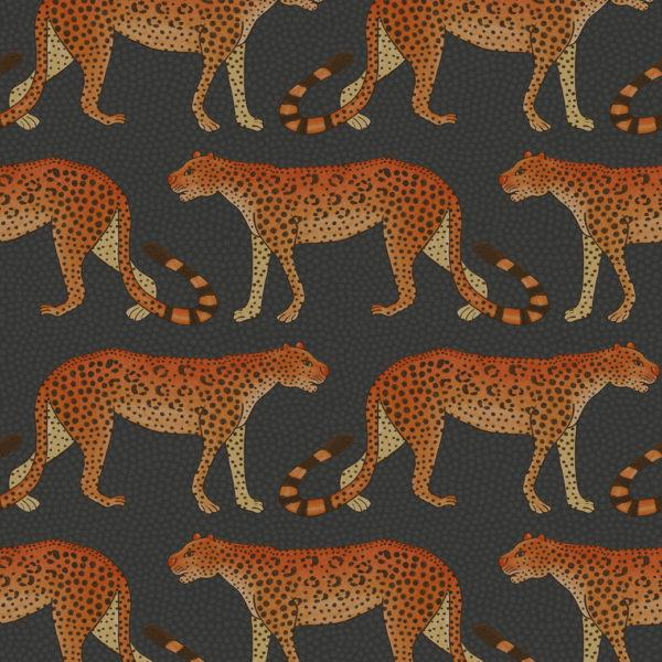 Ardmore - Leopard Walk Wallpaper