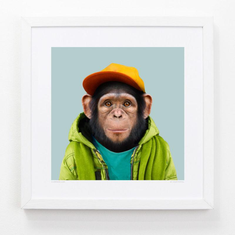 Monkey Zoo Portrait Art Print