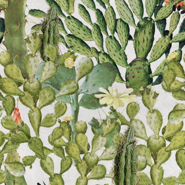 Opuntia Anthracite Wallpaper