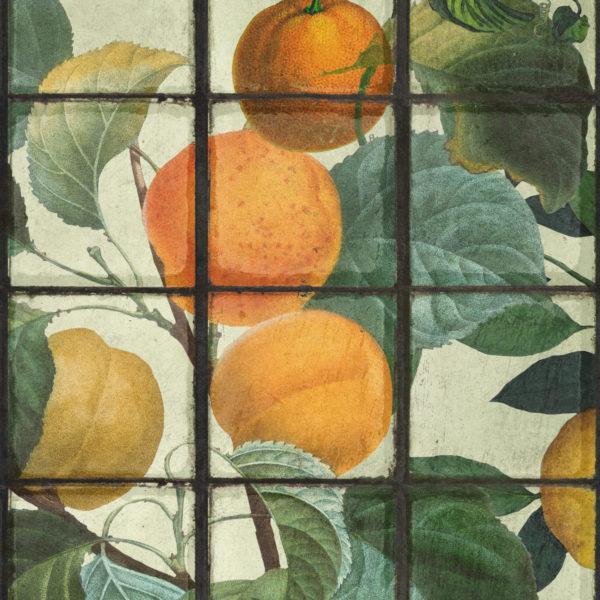 Orangerie Wallpaper