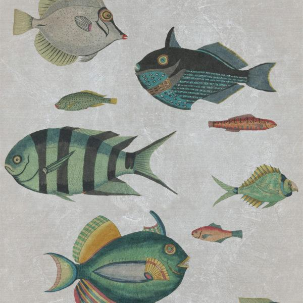 Poissons Grey Wallpaper