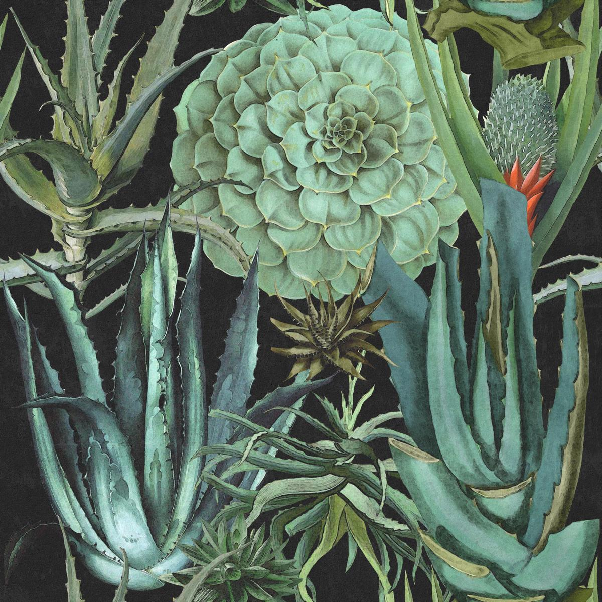 Succulents Anthracite Wallpaper