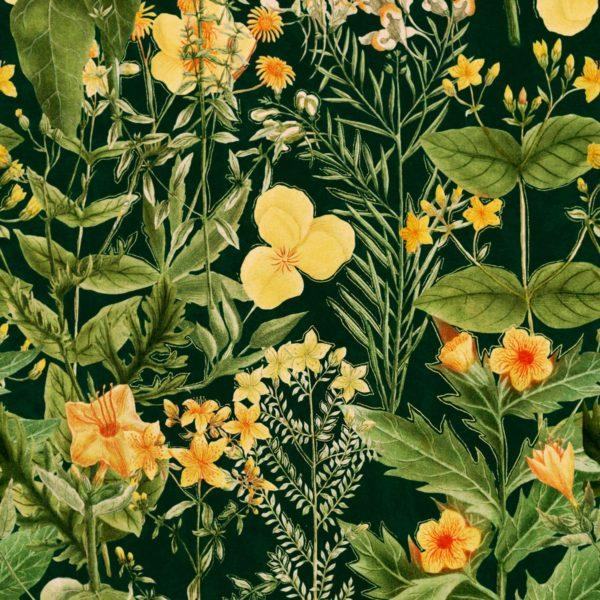 Mimulus Anthracite Wallpaper