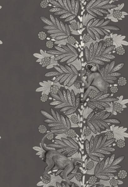 Ardmore - Acacia Wallpaper