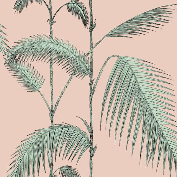 Palm Leaves Wallpaper
