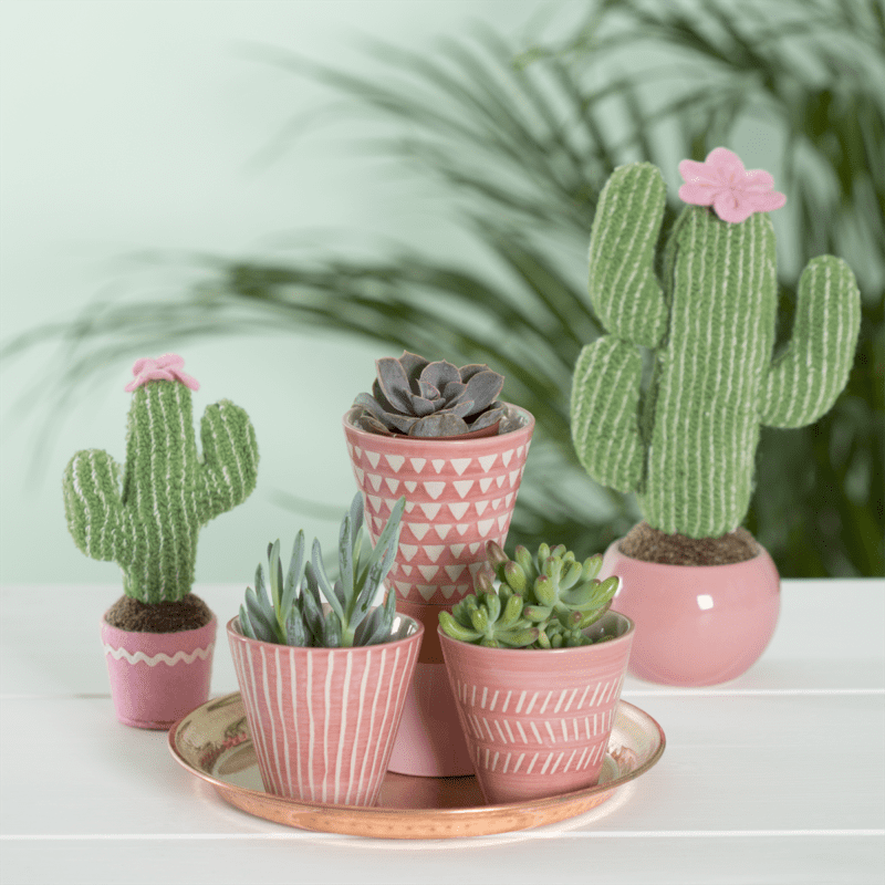 Mini Pink Ceramic Planters - Set of 3
