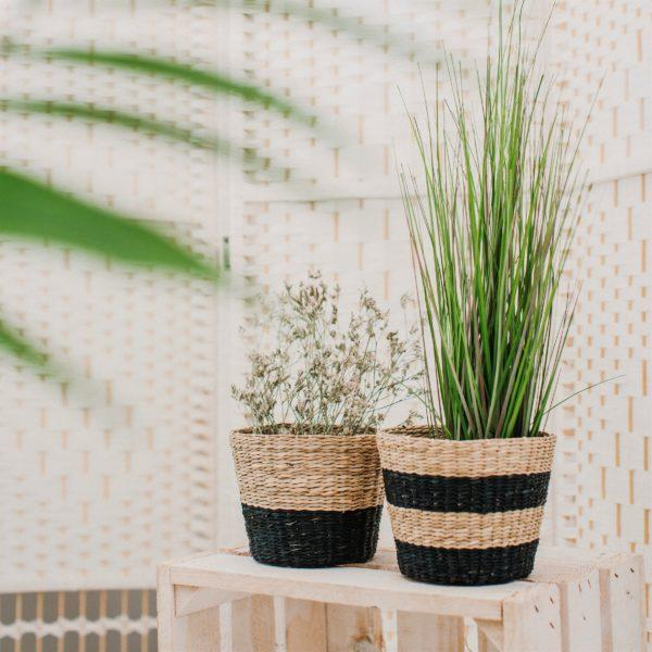 Black Stripe Seagrass Planter