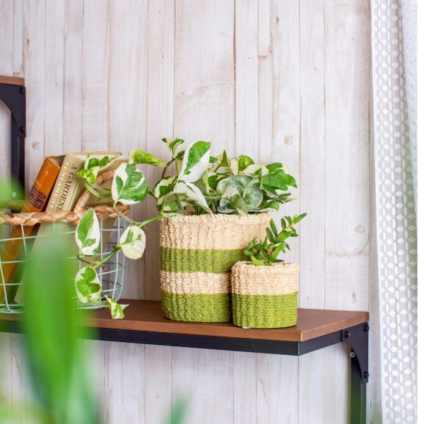 Mini Green Stripe Cement Basket Planter