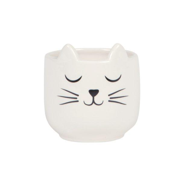 Cat Whiskers Mini Planter