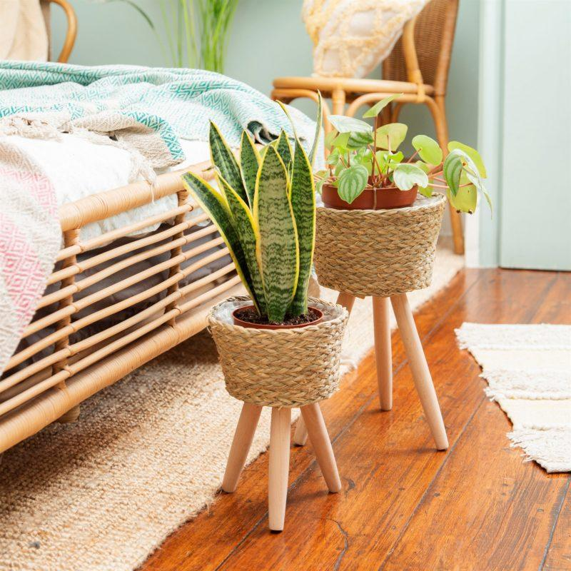 Basket Planter on Leg - Small